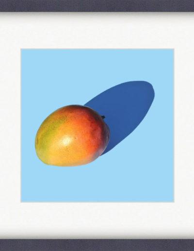 Авокадо на голубом