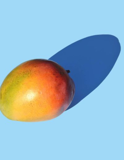 Репродукция картина - Авокадо на голубом